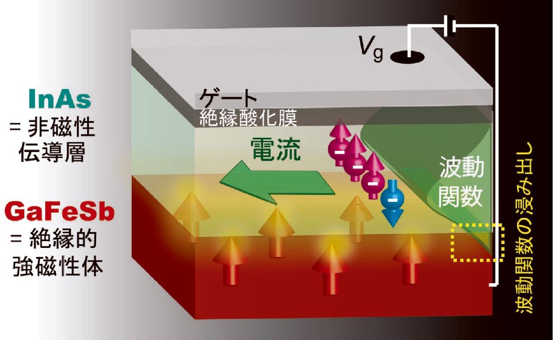 [図1]電流を担う電子の波動関数は、InAs層中に存在し2次元電子となるが、量子力学的な効果により隣接するGaFeSb層(強磁性で磁化をもつ)にも一部が空間的に浸み出す(破線部分)。この電子の波動関数のGaFeSb側への浸み出しによって、電流と磁化の結合が生じ、結果として磁場を印加したときの電流の変化、すなわち磁気抵抗効果が得られる。また、外部からのゲート電圧Vgによって波動関数の位置を制御できるので、この結合そのものを電気的な手段で制御することが可能であり、Vgを変えると磁気抵抗効果の大きさが変調される。この結果は、磁性を持たない非磁性半導体中に、電圧を印加するという電気的な手段により磁気的な性質を付与できることを示す